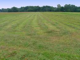 Na czym polega badanie gruntu?