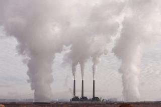 Jak dbać o czyste powietrze?